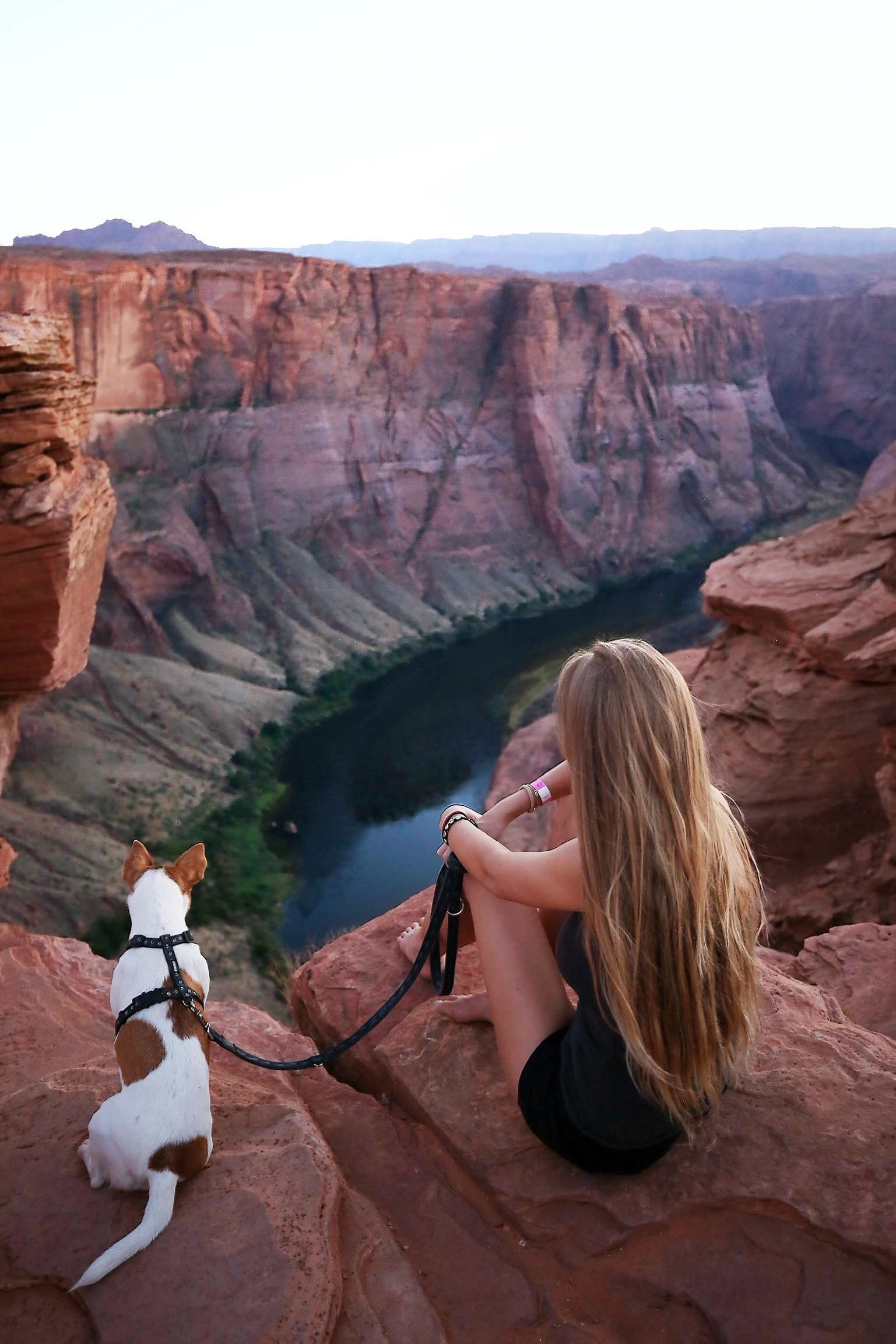 Nora En Pure sits on a scenic rock with her dog