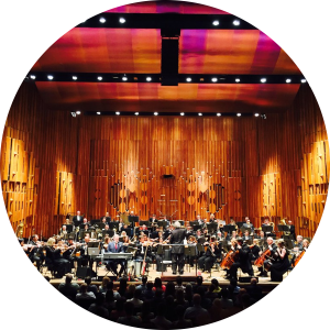 Royal Philharmonic Orchestra
