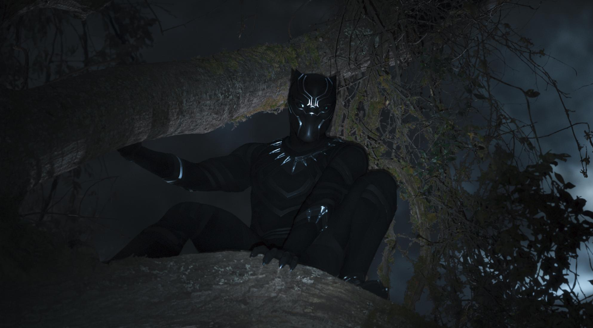 'Black Panther' the film