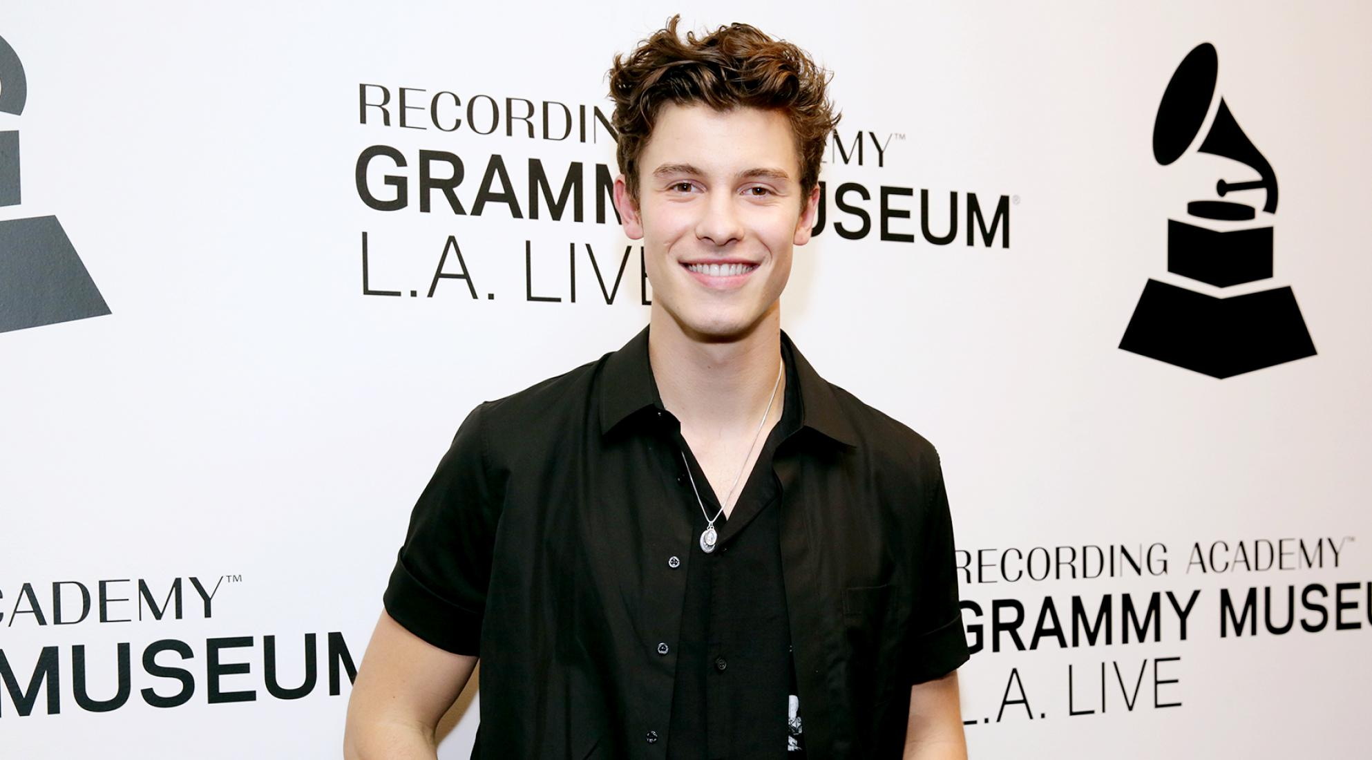 Shawn Mendes_artist page