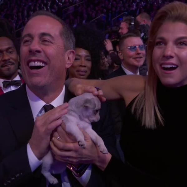 James Corden Consoles GRAMMY Losers With Puppies