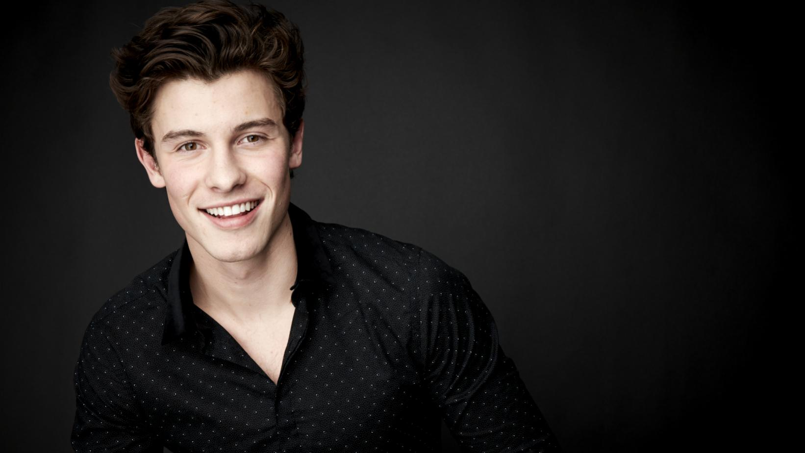 Shawn Mendes portrait